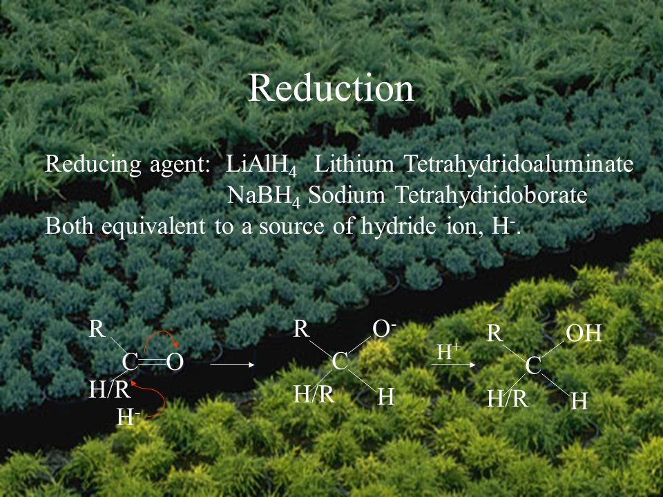 Reduction Reducing agent: LiAlH 4 Lithium Tetrahydridoaluminate NaBH 4 Sodium Tetrahydridoborate Both equivalent to a source of hydride ion, H -.