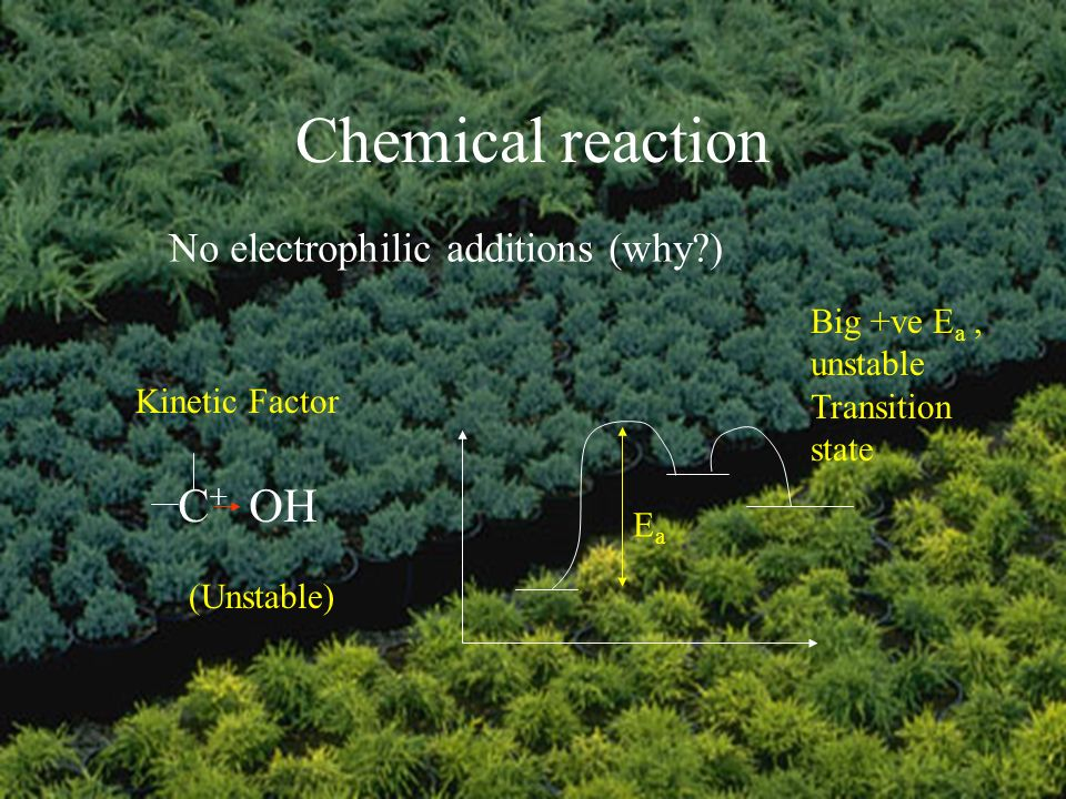 Chemical reaction No electrophilic additions (why ) EaEa Big +ve E a, unstable Transition state Kinetic Factor (Unstable) C+C+ OH