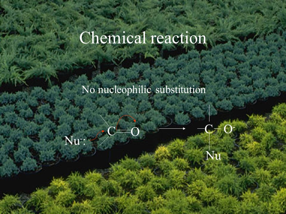 Chemical reaction No nucleophilic substitution C O Nu - : CO-O- Nu