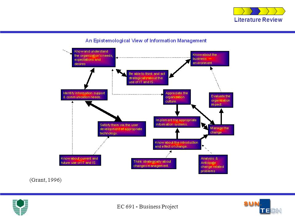EC 691 - Business Project (Grant, 1996) Literature Review