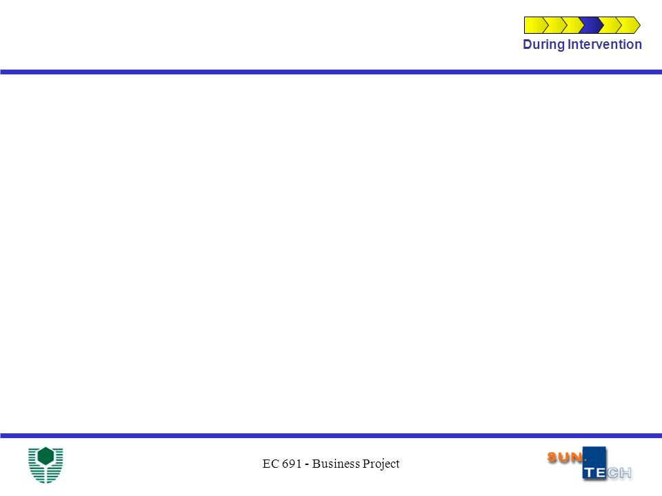 EC 691 - Business Project During Intervention