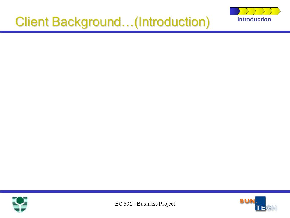 EC 691 - Business Project Client Background…(Introduction) Introduction