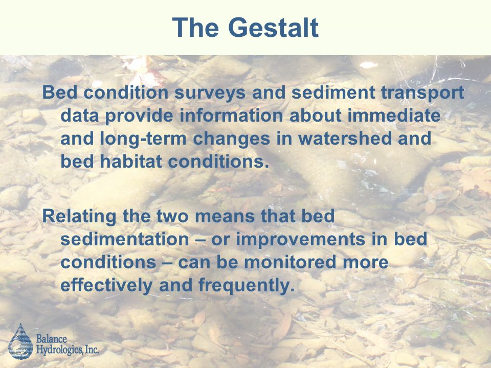 The Gestalt Bed condition surveys and sediment transport data provide information about immediate and long-term changes in watershed and bed habitat conditions.