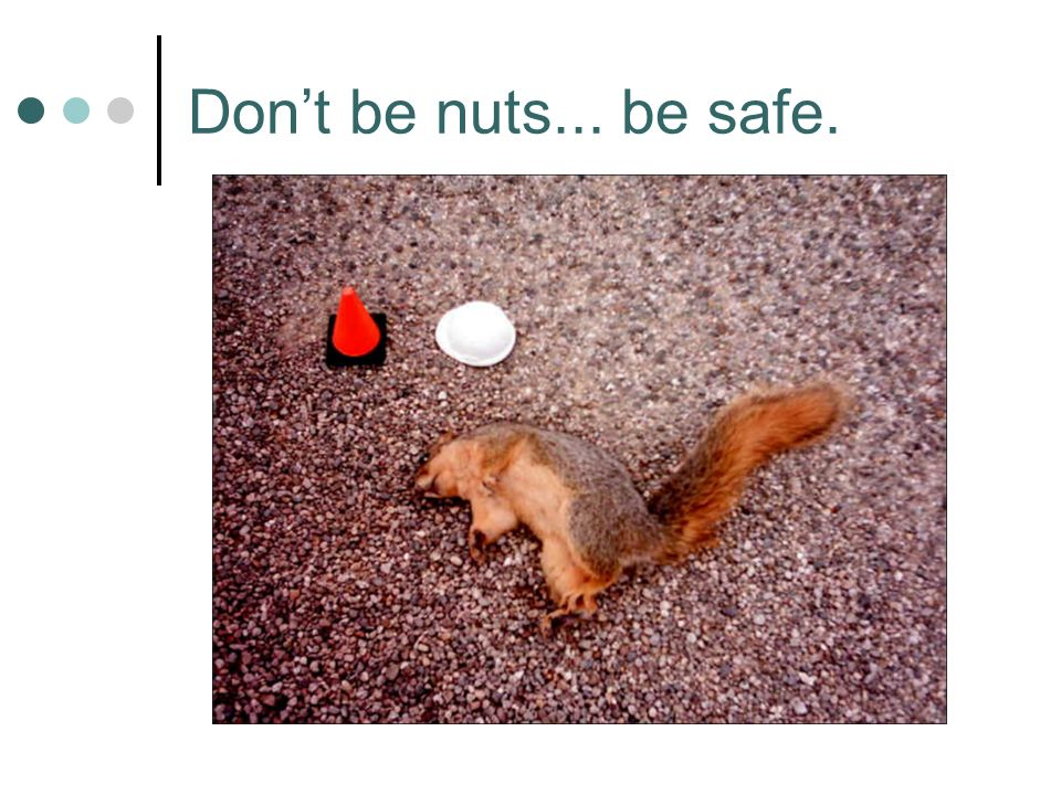 Dont be nuts... be safe.