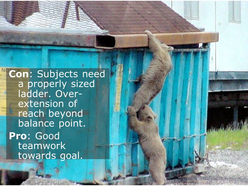 Con: Subjects need a properly sized ladder. Over- extension of reach beyond balance point. Pro: Good teamwork towards goal.