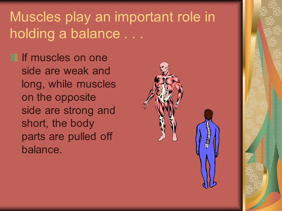 Muscles play an important role in holding a balance... If muscles on one side are weak and long, while muscles on the opposite side are strong and sho