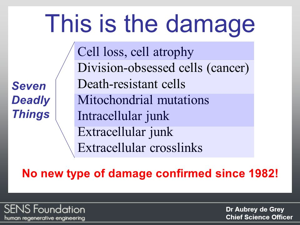 Dr Aubrey de Grey Chief Science Officer This is the damage No new type of damage confirmed since 1982! Seven Deadly Things Cell loss, cell atrophy Div