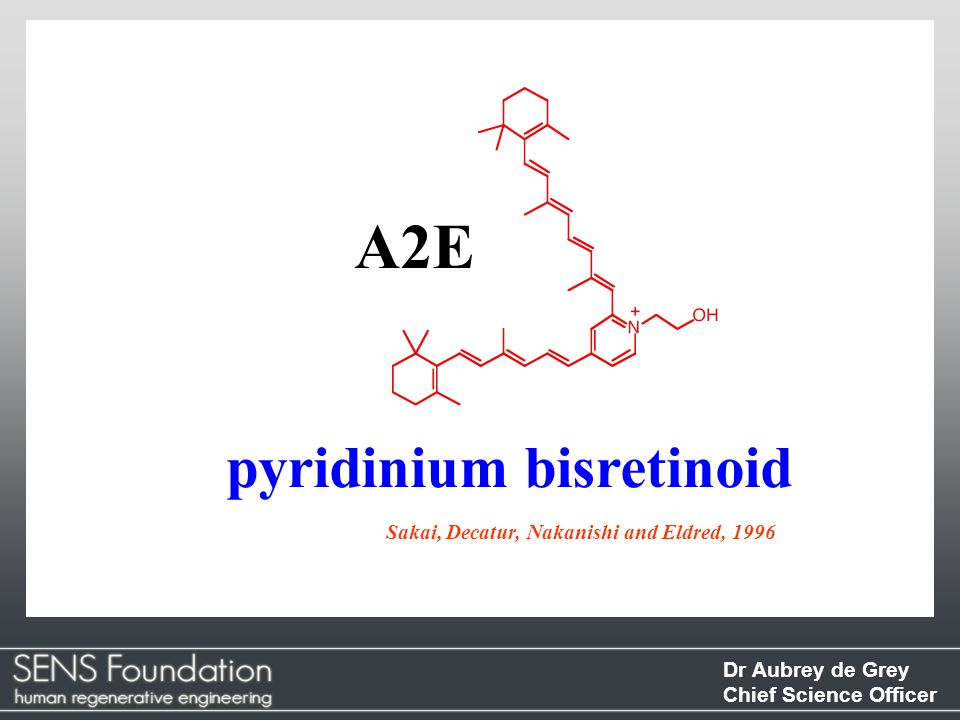 Dr Aubrey de Grey Chief Science Officer pyridinium bisretinoid Sakai, Decatur, Nakanishi and Eldred, 1996 A2E