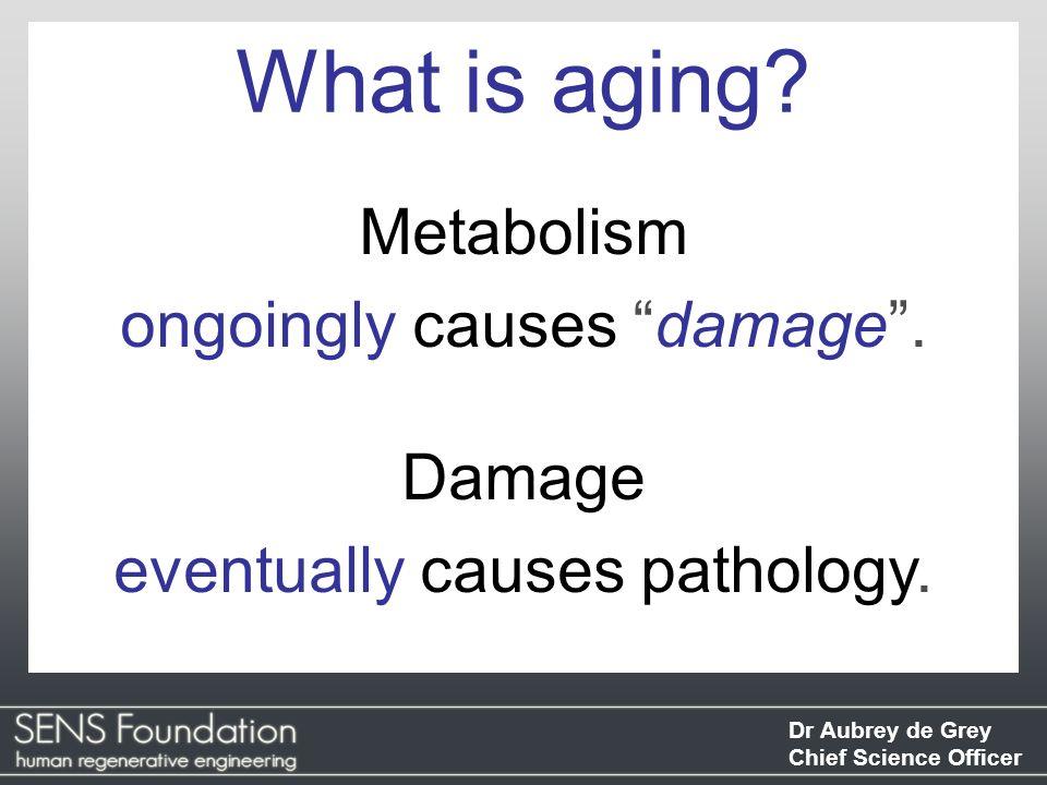 Dr Aubrey de Grey Chief Science Officer Pathology Options for intervention GerontologyGeriatrics MetabolismDamage
