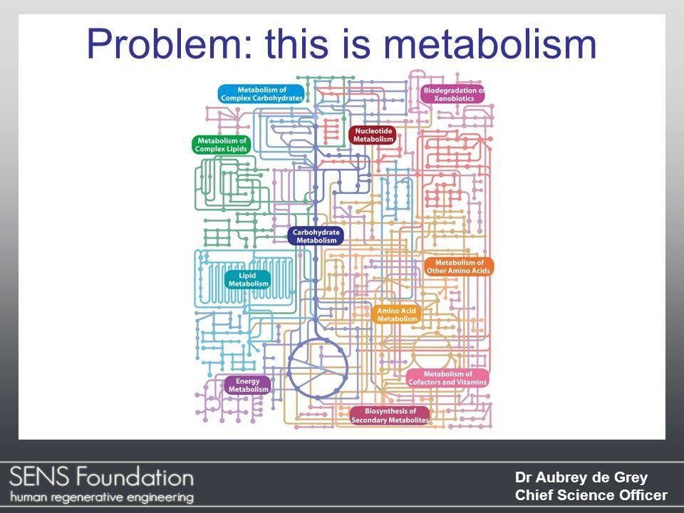 Dr Aubrey de Grey Chief Science Officer Problem: this is metabolism