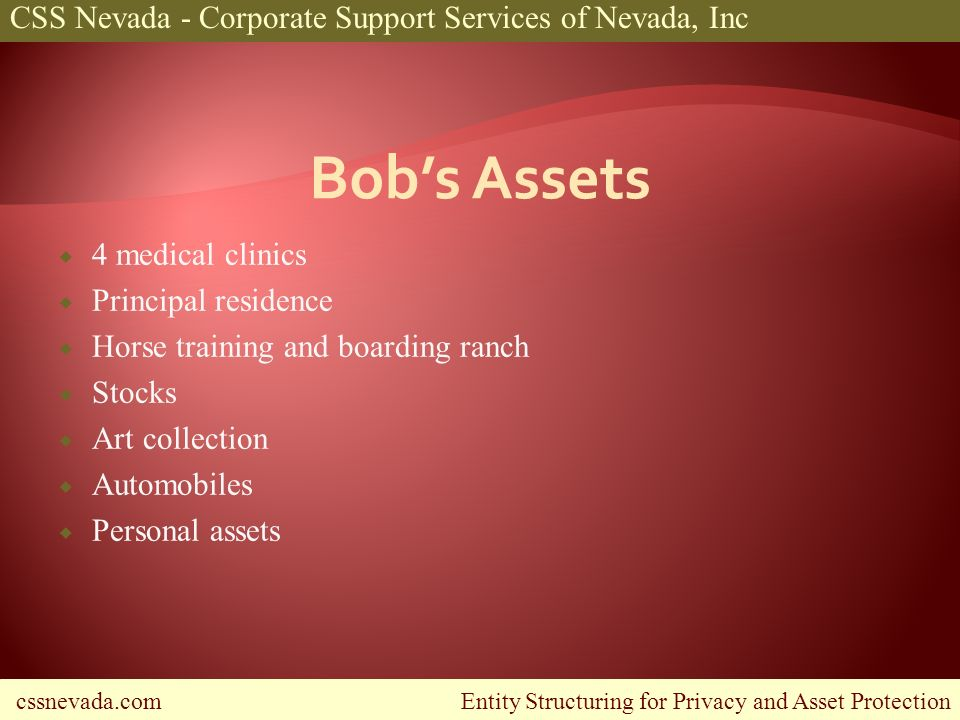 cssnevada.com Entity Structuring for Privacy and Asset Protection CSS Nevada - Corporate Support Services of Nevada, Inc 4 medical clinics Principal r