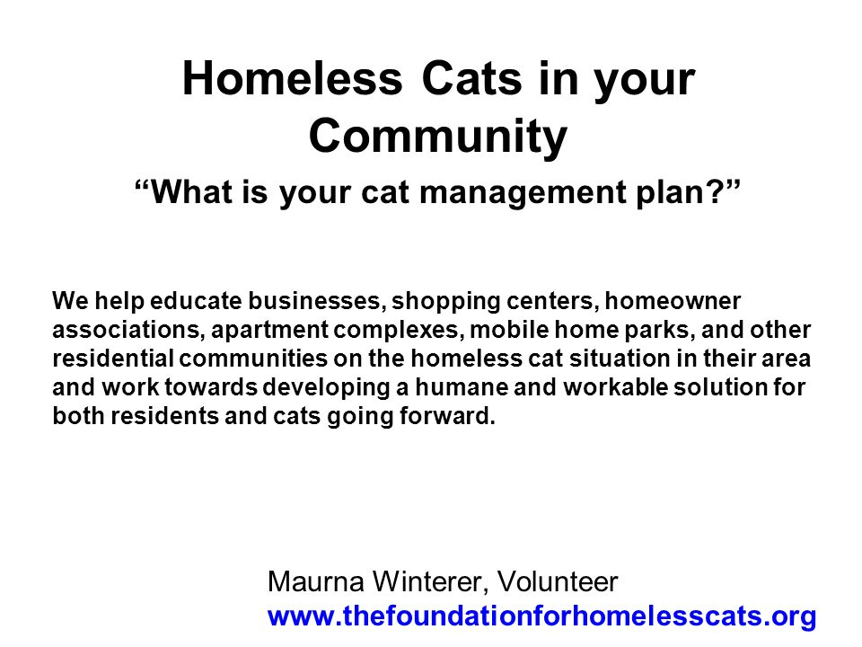 Maurna Winterer, Volunteer www.thefoundationforhomelesscats.org Homeless Cats in your Community What is your cat management plan? We help educate busi