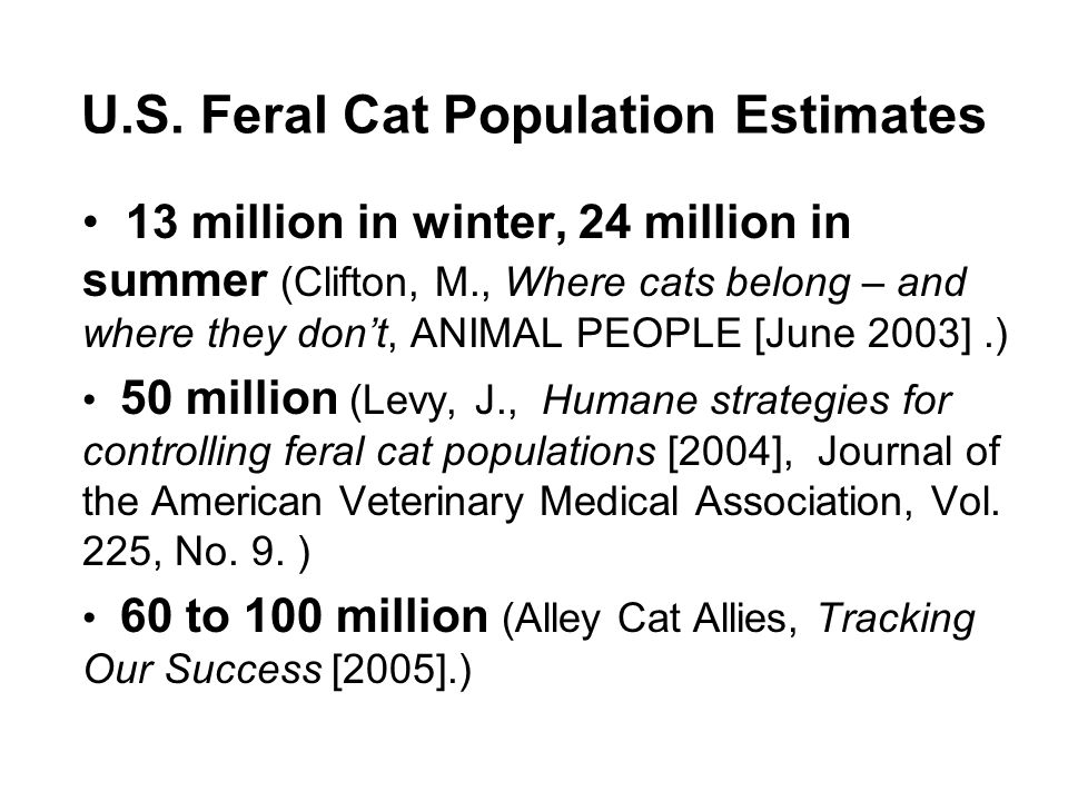 U.S. Feral Cat Population Estimates 13 million in winter, 24 million in summer (Clifton, M., Where cats belong – and where they dont, ANIMAL PEOPLE [J