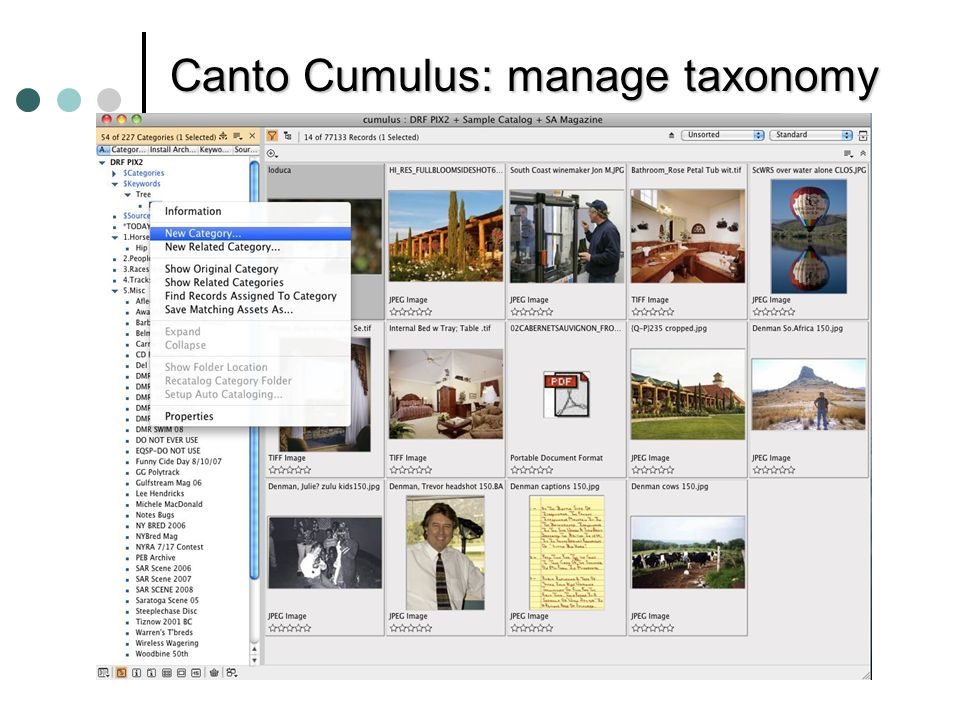 © 2010 Donna Slawsky Canto Cumulus: manage taxonomy