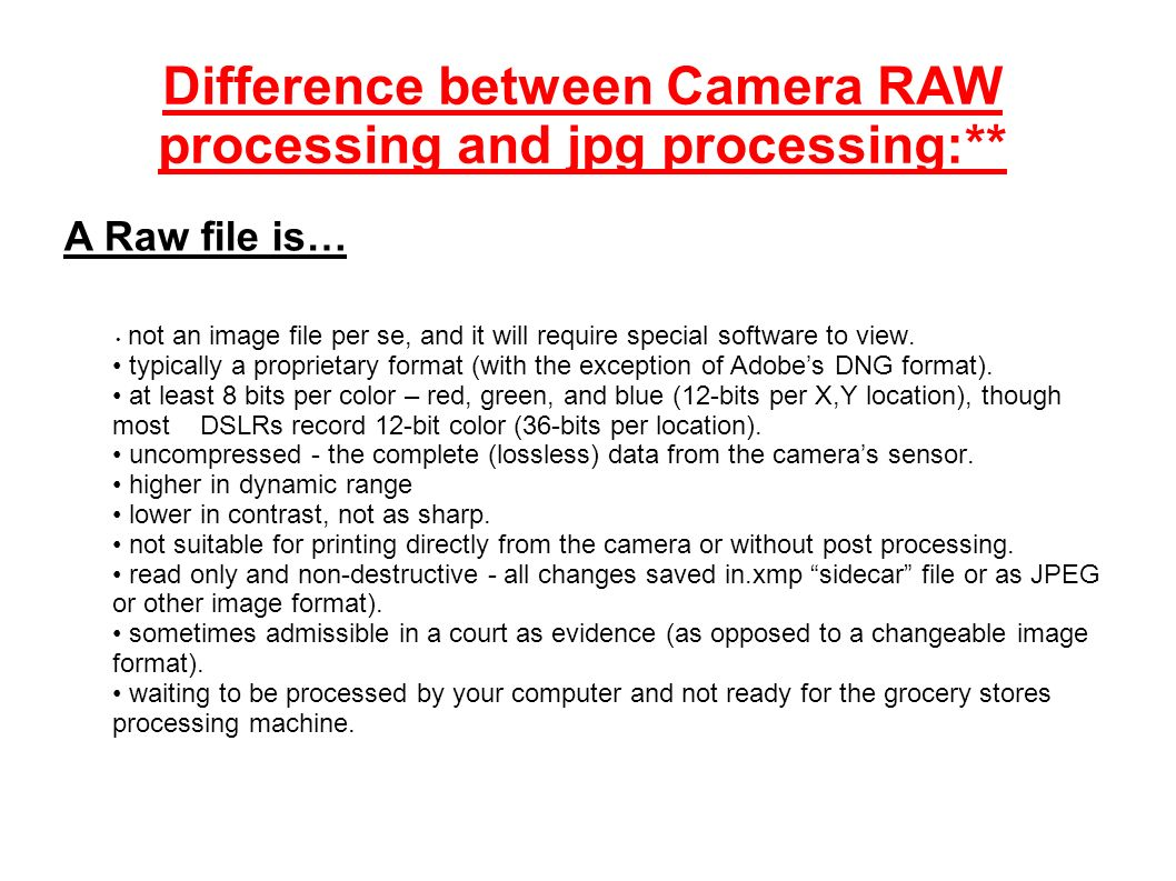 Difference between Camera RAW processing and jpg processing:** not an image file per se, and it will require special software to view.