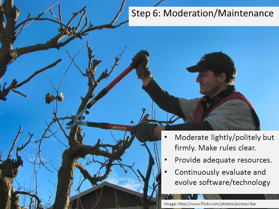 Step 6: Moderation/Maintenance Image:   Moderate lightly/politely but firmly.