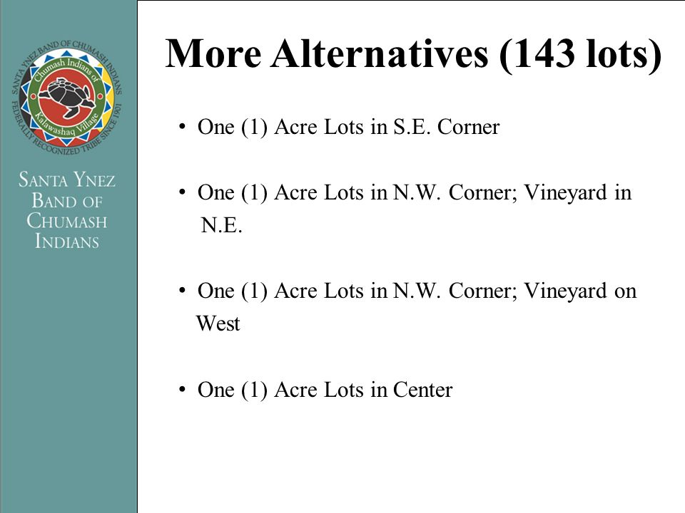 PRESENTATION TITLE Name of Presenter More Alternatives (143 lots) One (1) Acre Lots in S.E. Corner One (1) Acre Lots in N.W. Corner; Vineyard in N.E.