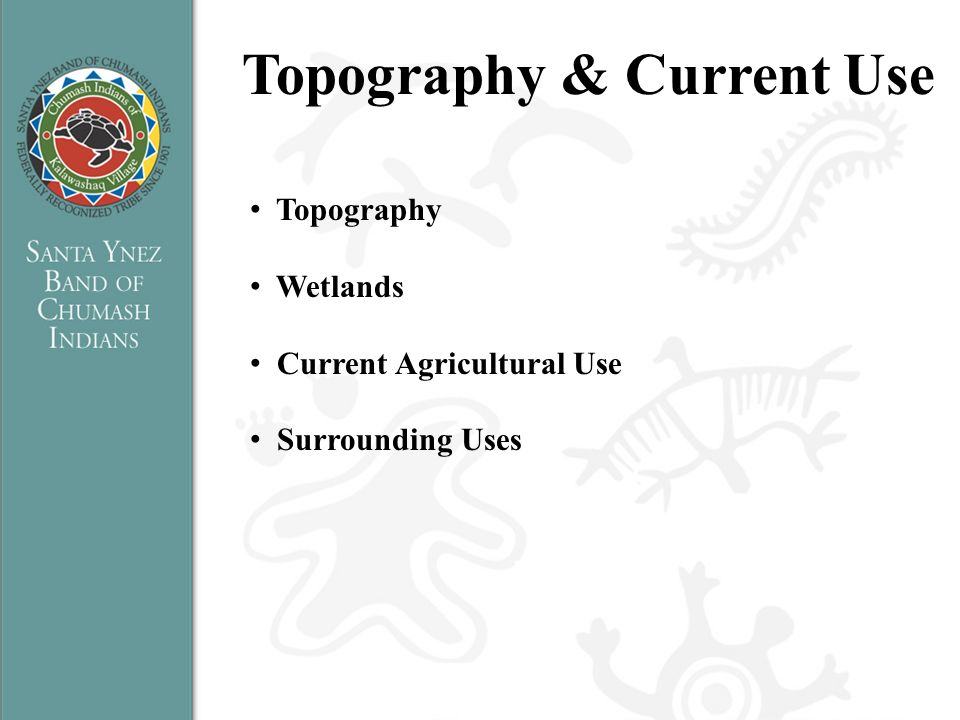 Topography & Current Use Topography Wetlands Current Agricultural Use Surrounding Uses