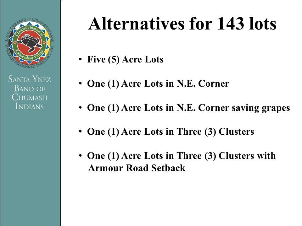 PRESENTATION TITLE Name of Presenter Five (5) Acre Lots One (1) Acre Lots in N.E. Corner One (1) Acre Lots in N.E. Corner saving grapes One (1) Acre L