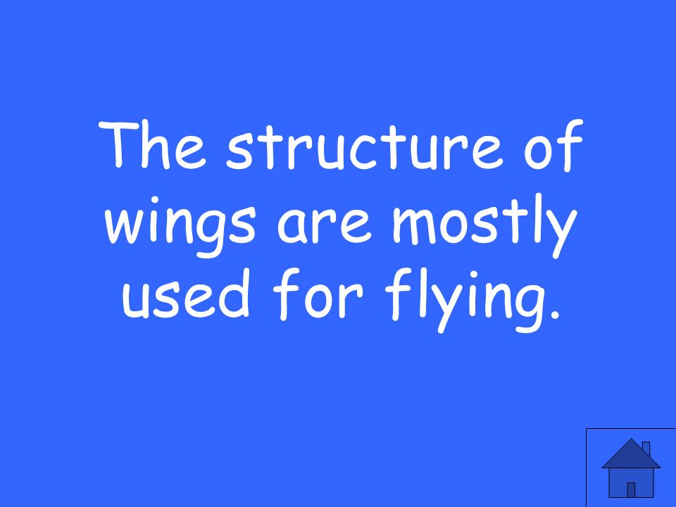 The structure of wings are mostly used for flying.