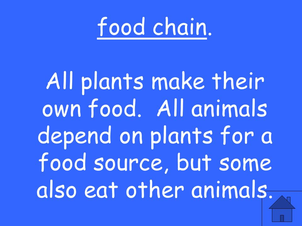 food chain.All plants make their own food.