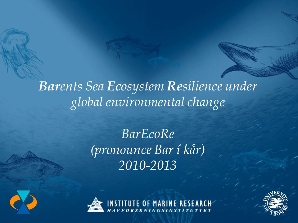 Bar ents Sea Ec osystem Re silience under global environmental change BarEcoRe (pronounce Bar í kår) 2010-2013
