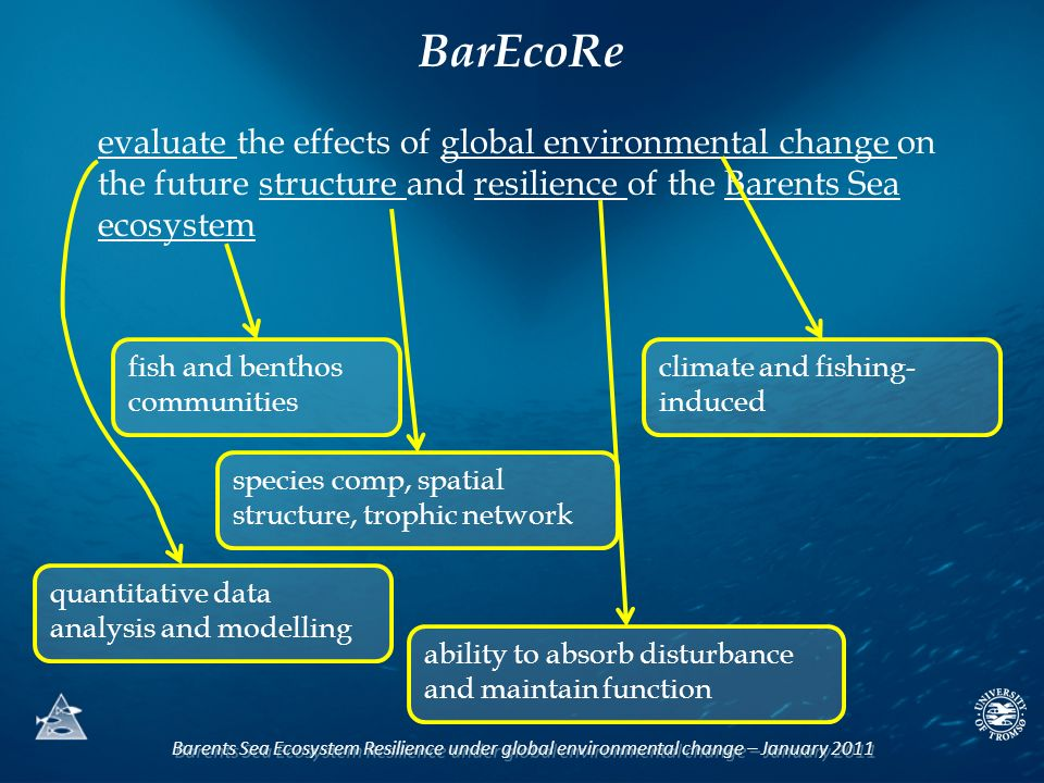Barents Sea Ecosystem Resilience under global environmental change – January 2011 evaluate the effects of global environmental change on the future structure and resilience of the Barents Sea ecosystem quantitative data analysis and modelling climate and fishing- induced species comp, spatial structure, trophic network ability to absorb disturbance and maintain function BarEcoRe fish and benthos communities