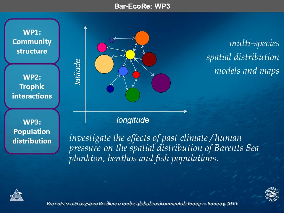 Barents Sea Ecosystem Resilience under global environmental change – January 2011 Bar-EcoRe: WP3 WP1: Community structure WP2: Trophic interactions WP