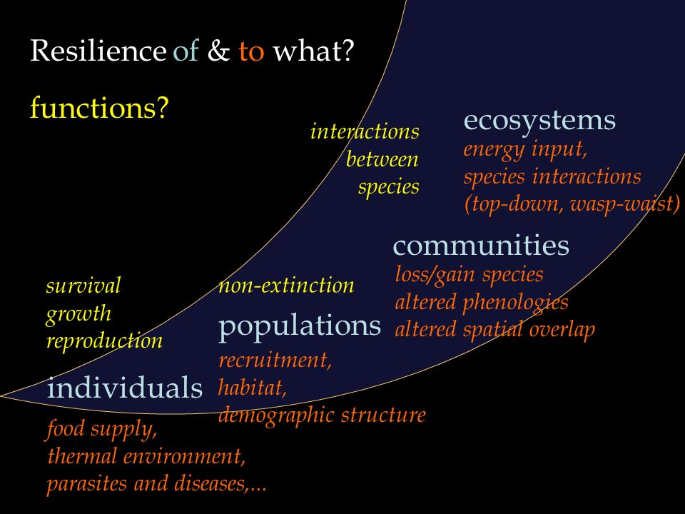 Barents Sea Ecosystem Resilience under global environmental change – January 2011 Resilience of & to what? individuals populations communities ecosyst