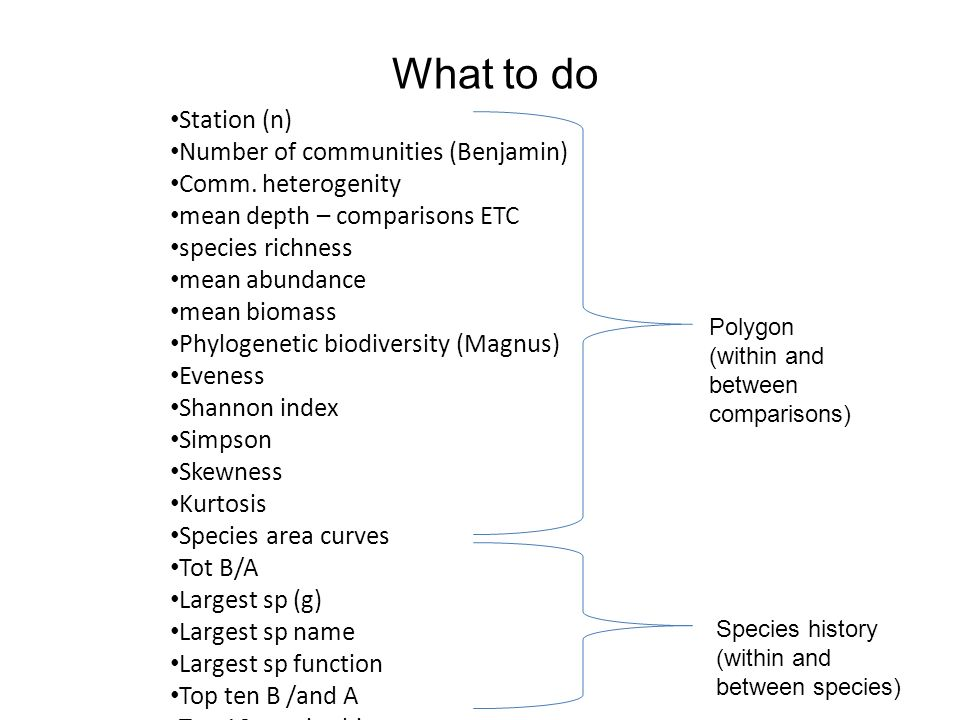 What to do Station (n) Number of communities (Benjamin) Comm. heterogenity mean depth – comparisons ETC species richness mean abundance mean biomass P