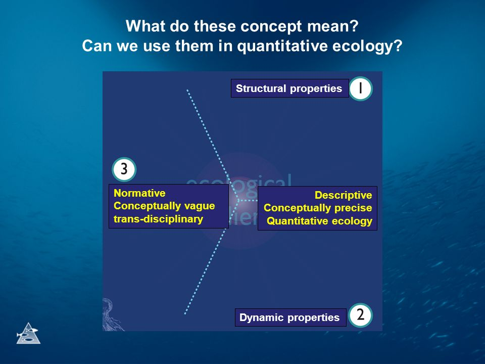What do these concept mean? Can we use them in quantitative ecology? Structural properties Dynamic properties Descriptive Conceptually precise Quantit
