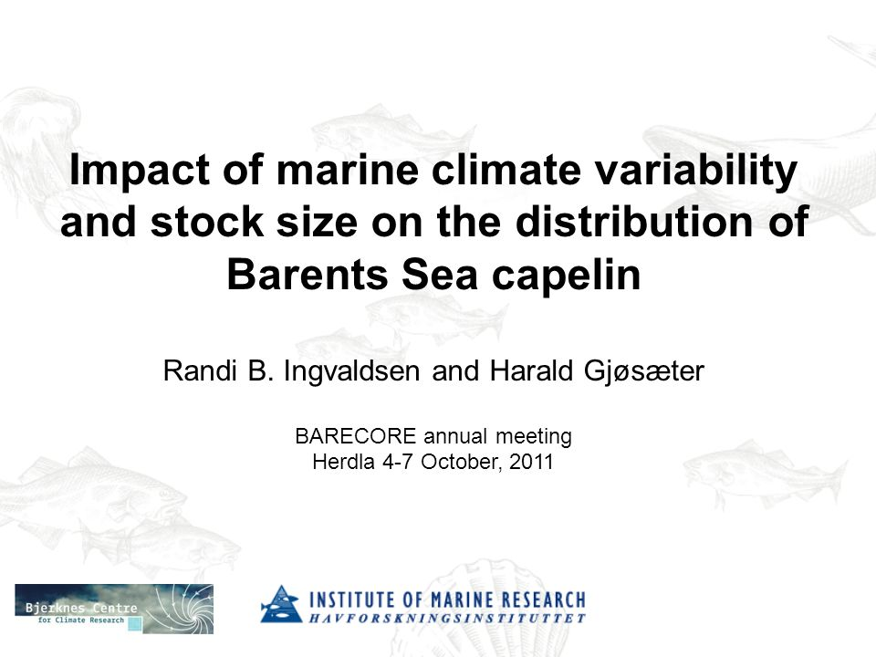 Impact of marine climate variability and stock size on the distribution of Barents Sea capelin Randi B.