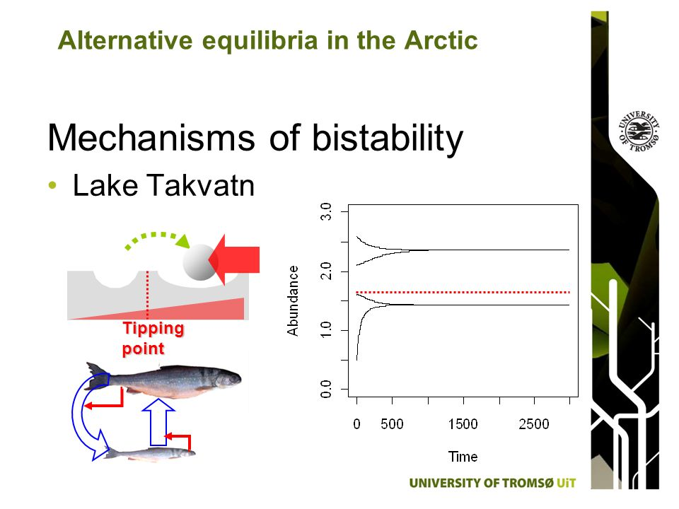 Mechanisms of bistability Lake Takvatn Alternative equilibria in the Arctic Tipping point