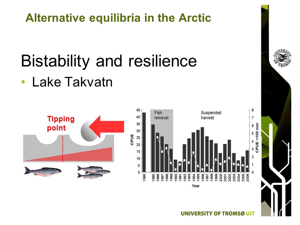 Bistability and resilience Lake Takvatn Alternative equilibria in the Arctic Tipping point