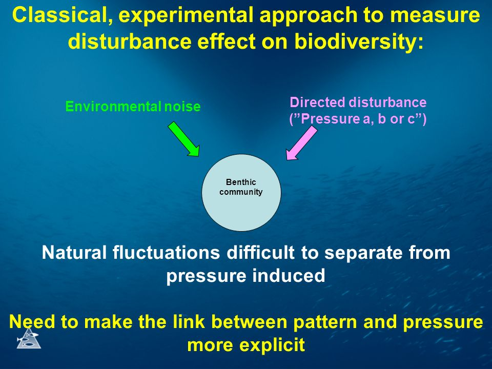 Classical, experimental approach to measure disturbance effect on biodiversity: Benthic community Environmental noise Directed disturbance (Pressure a, b or c) Natural fluctuations difficult to separate from pressure induced Need to make the link between pattern and pressure more explicit