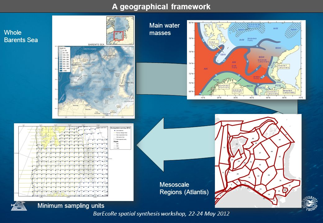 BarEcoRe spatial synthesis workshop, 22-24 May 2012 A geographical framework Whole Barents Sea Main water masses Mesoscale Regions (Atlantis) Minimum sampling units