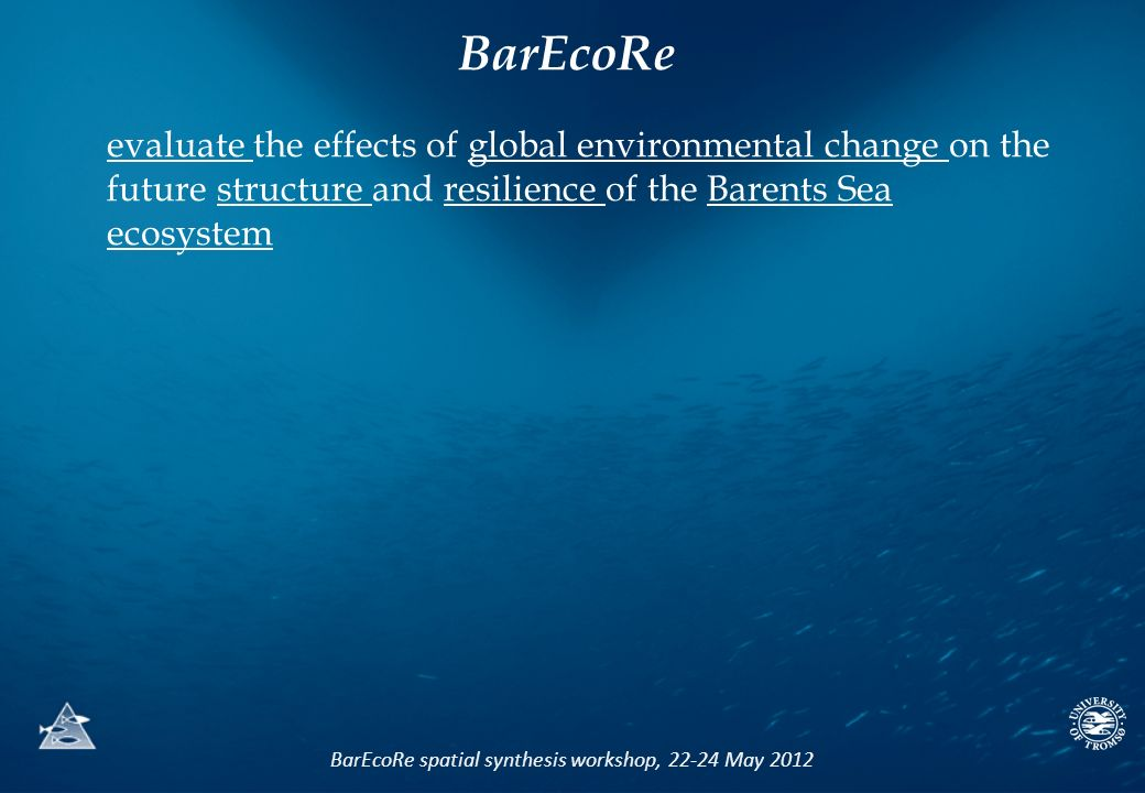 BarEcoRe spatial synthesis workshop, 22-24 May 2012 evaluate the effects of global environmental change on the future structure and resilience of the Barents Sea ecosystem BarEcoRe