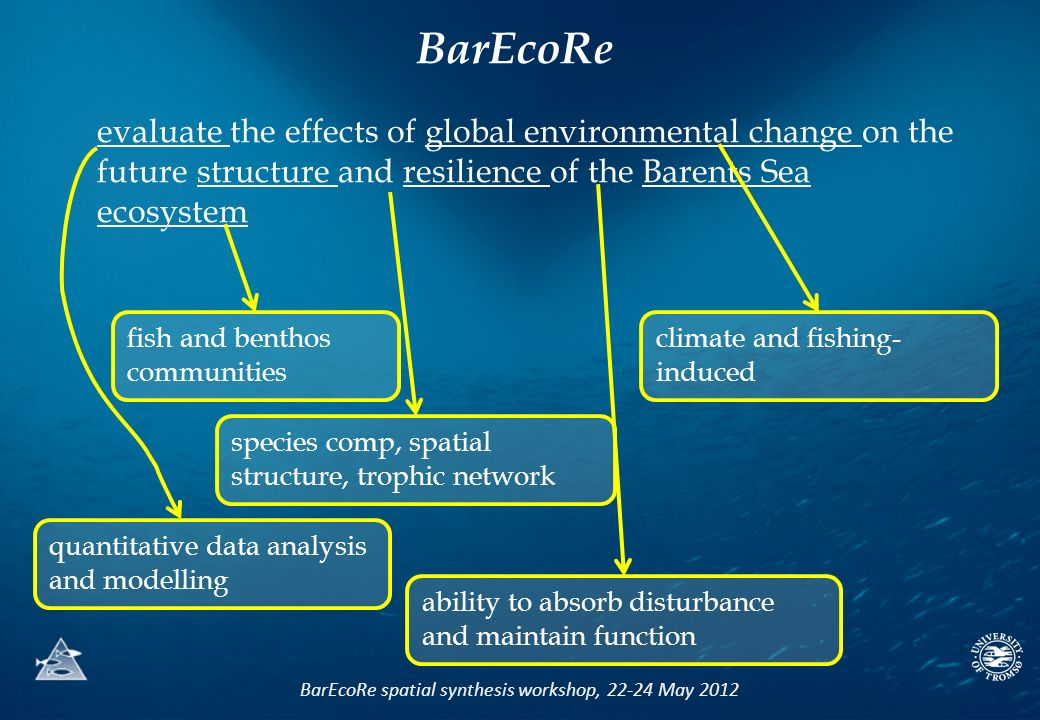 BarEcoRe spatial synthesis workshop, 22-24 May 2012 evaluate the effects of global environmental change on the future structure and resilience of the Barents Sea ecosystem quantitative data analysis and modelling climate and fishing- induced species comp, spatial structure, trophic network ability to absorb disturbance and maintain function BarEcoRe fish and benthos communities