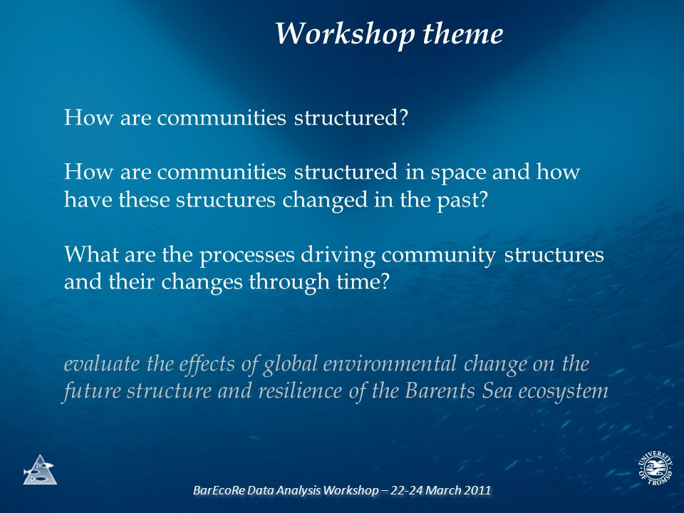 BarEcoRe Data Analysis Workshop – 22-24 March 2011 How are communities structured? How are communities structured in space and how have these structur