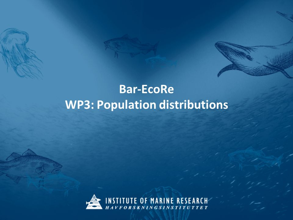 Bar-EcoRe kick-off meeting 15/06/2010 – WP3: population distributions Thank you