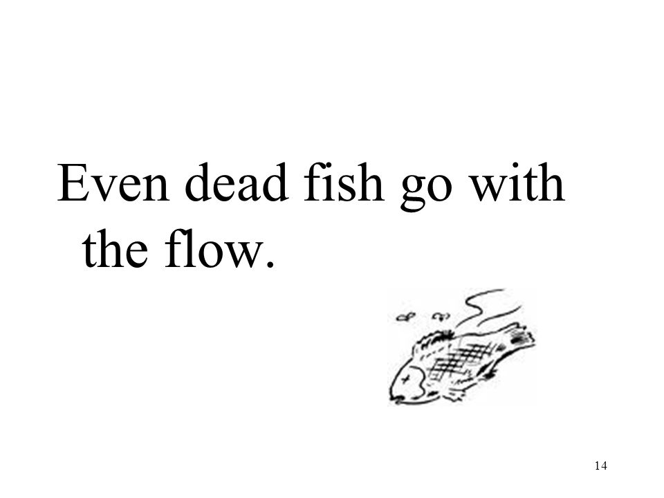 Even dead fish go with the flow. 14