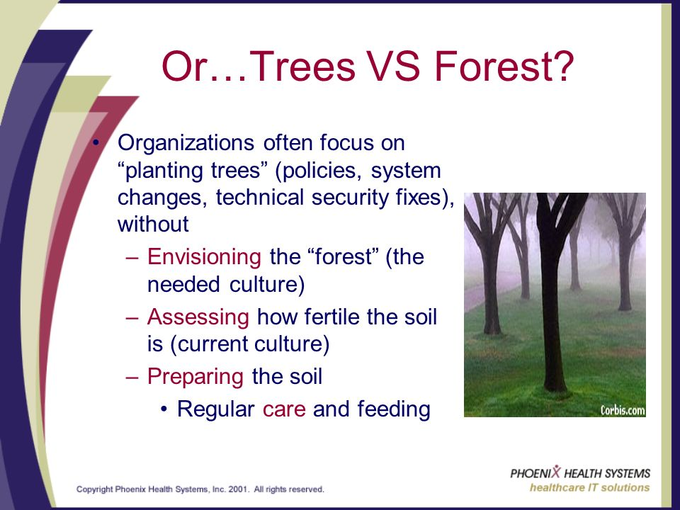 Or…Trees VS Forest.