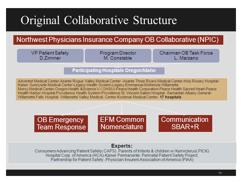 13 Original Collaborative Structure Northwest Physicians Insurance Company OB Collaborative (NPIC) VP Patient Safety D.Zimmer Program Director M.
