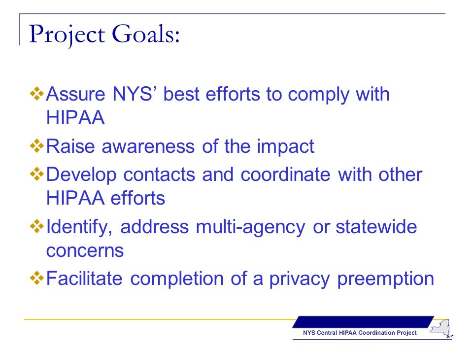 Project Goals: Assure NYS best efforts to comply with HIPAA Raise awareness of the impact Develop contacts and coordinate with other HIPAA efforts Identify, address multi-agency or statewide concerns Facilitate completion of a privacy preemption