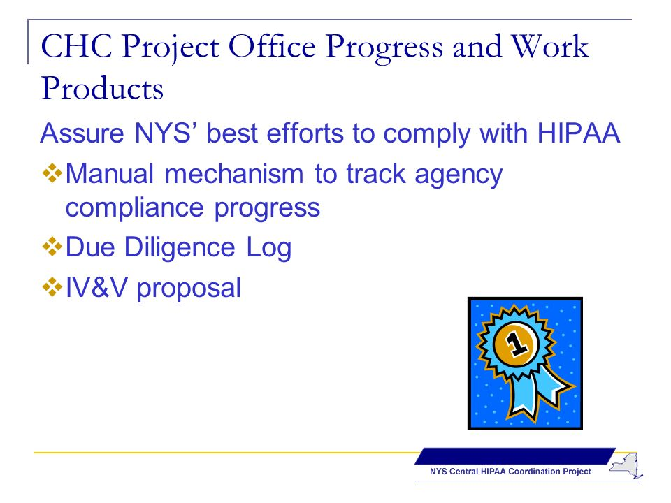 CHC Project Office Progress and Work Products Assure NYS best efforts to comply with HIPAA Manual mechanism to track agency compliance progress Due Diligence Log IV&V proposal