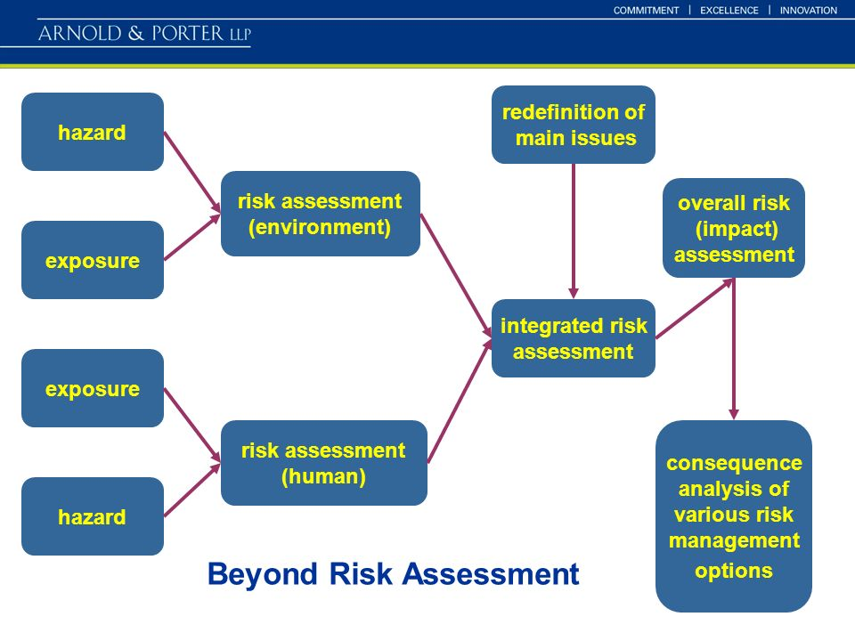 6 hazard exposure hazard risk assessment (environment) risk assessment (human) redefinition of main issues integrated risk assessment overall risk (impact) assessment consequence analysis of various risk management options Beyond Risk Assessment