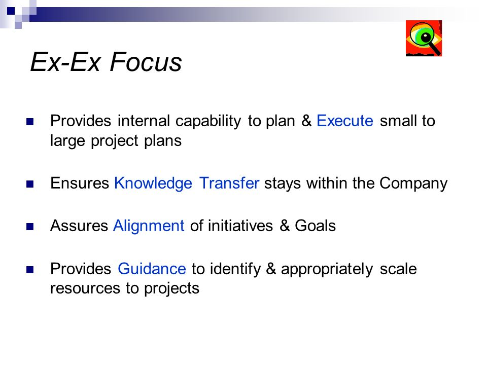 Ex-Ex Focus Provides internal capability to plan & Execute small to large project plans Ensures Knowledge Transfer stays within the Company Assures Al