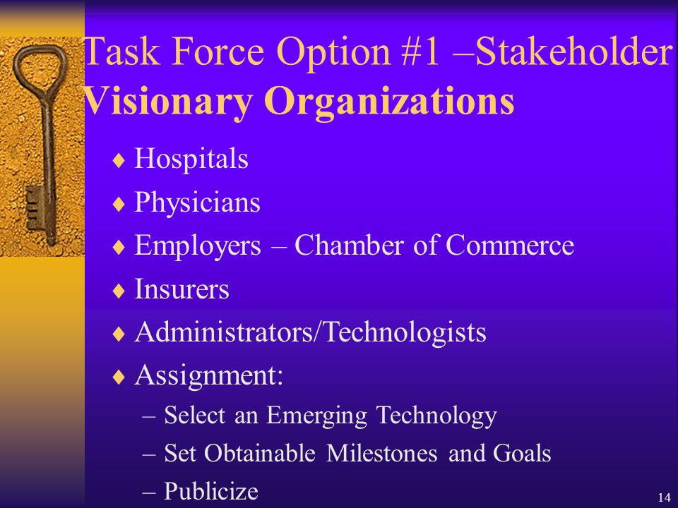 14 Hospitals Physicians Employers – Chamber of Commerce Insurers Administrators/Technologists Assignment: –Select an Emerging Technology –Set Obtainable Milestones and Goals –Publicize Task Force Option #1 –Stakeholder Visionary Organizations
