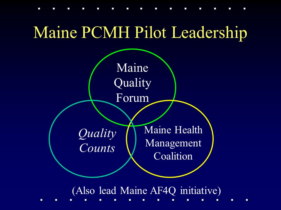 Maine PCMH Pilot Leadership Quality Counts Maine Quality Forum Maine Health Management Coalition (Also lead Maine AF4Q initiative)