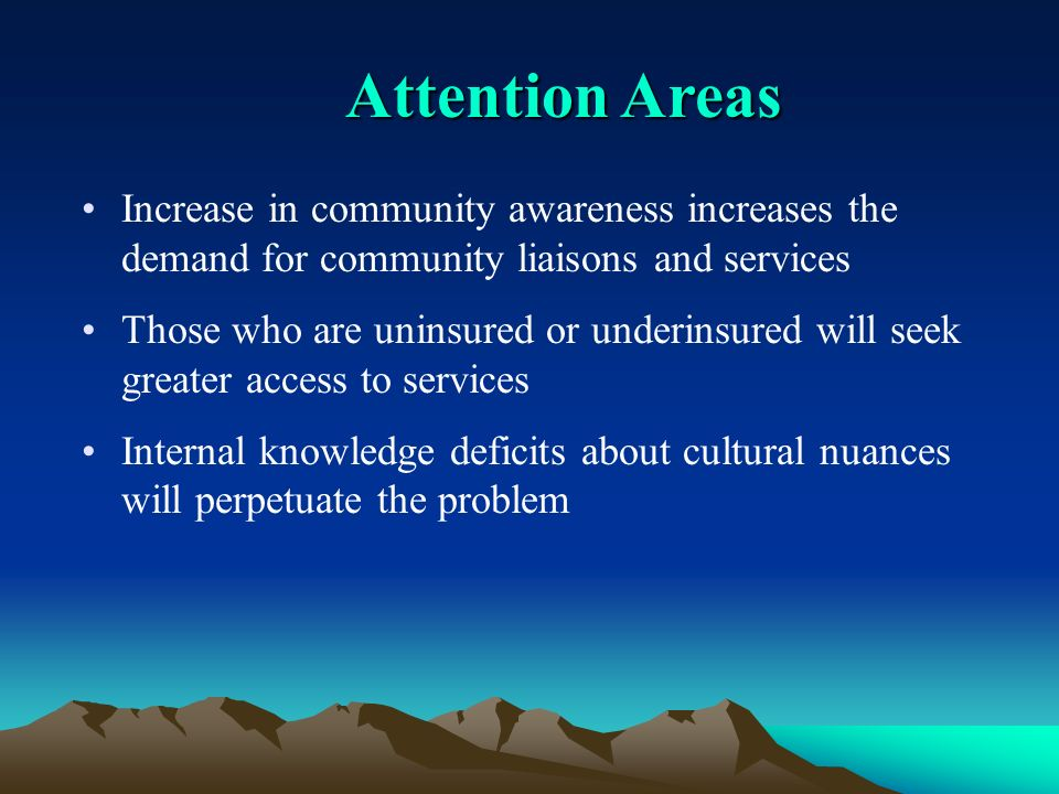 Attention Areas Increase in community awareness increases the demand for community liaisons and services Those who are uninsured or underinsured will seek greater access to services Internal knowledge deficits about cultural nuances will perpetuate the problem